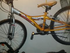 Predam Bike