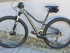 Specialized Fate Comp 29