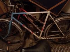 Zberatelský Bicykel