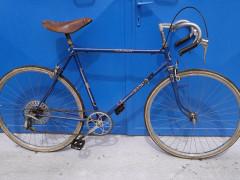 Bicykel Eska Deluxe