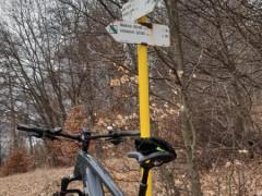 E Bike Trek Powerfly 7 2021