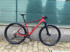 Custom 29er Carbon