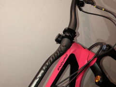 Specialized S-works Dh Carbon