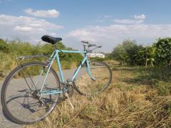Favorit Originál Mestský Bicykel