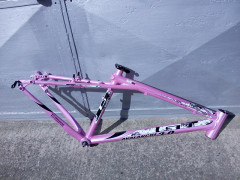 Damsky Gt Avalanche Gtw 3.0 M Pink