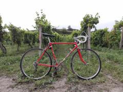 Bicykel Favorit