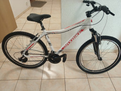 "Lady Bicykel 26"" Maxbike"