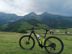E Bike Trek Powerfly 5