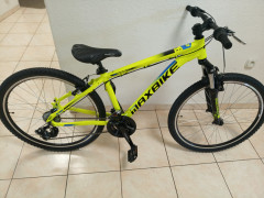 """26"""" Bike Maxbike"""