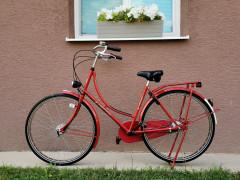 Holandský Bicykel Pointer Glorie
