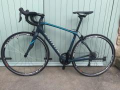 Specialized Ruby Carbon Bike