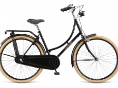 MestskÝ Retro Bicykel Dema Madeline Standard N3
