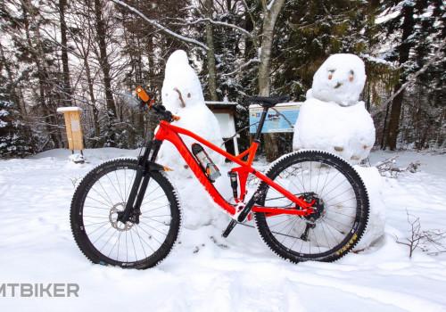 Snehová fantázia