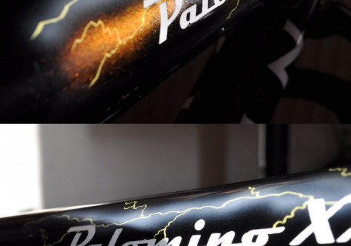 Klein Palomino - Palo