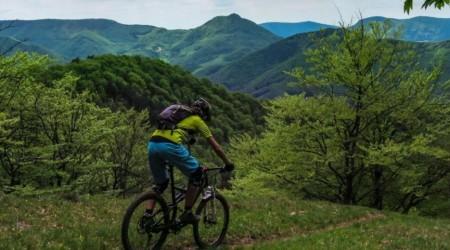 Celoodpružené bicykle okolo 4 500 € - takmer dokonalý stroj pre náročný terén