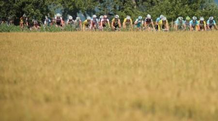 Propozície k ôsmemu ročníku Sereďmaratónu