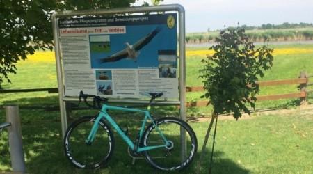 Tip na výlet: Okolo  Neusiedler See s Bianchi Specialissima - kolečko okolo jazera, ktoré nie je okolo jazera