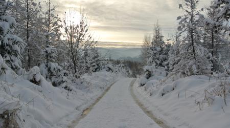 Zimná príprava hobby cyklistu - malo to zmysel?