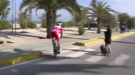 Video: Saganovi skrížila cestu žena so psom, v poslednej chvíli sa vyhol zrážke