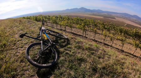 Video: Tour de Tokaj - rozlúčka s pretekmi medzi vinicami