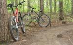 Cyklisti len po vyznačených trasách a lesných cestách