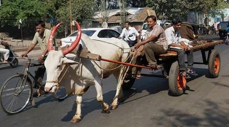 India - zastávka na ceste okolo sveta