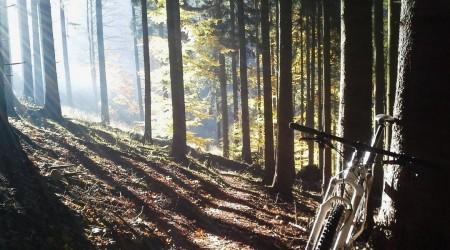 Jeseň – ideálne obdobie, kedy si užiť cyklistiku