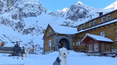 Zimný Gerlaching na Brnčalku alebo vyše 3 000 výškových vmrazivých Tatrách