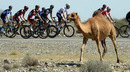 14. miesto pre Petra Sagana na druhej etape Okolo Ománu