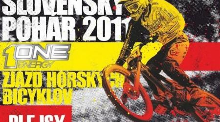 Slovenský pohár 2011 - ONE Energy DH PLEJSY