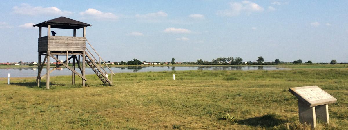 Cyklotrasy okolo Neziderského jazera (Neusiedler See) - Nenáročná cykloturistika kúsok od Bratislavy