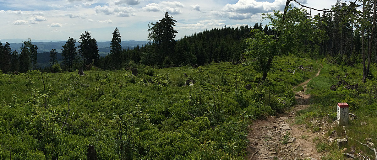 Prehľad prilieb v štýle All Mountain