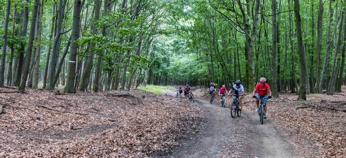 Reportáž: Častovský cyklookruh – podujatie, kde čas rozhodne nebudete nahánať