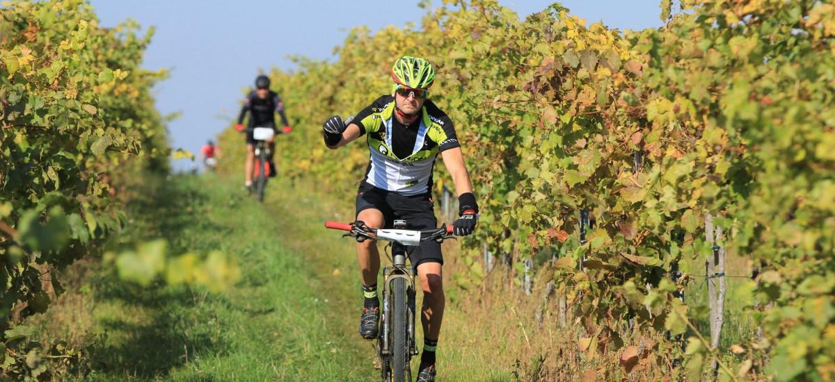 Pozvánka: Baynach MTB Marathon – ukončite sezónu vkrásnom prostredí viníc