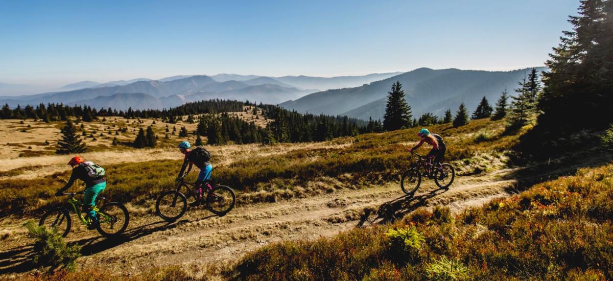Vyberáte bicykel? Ako nájsť ten správny?