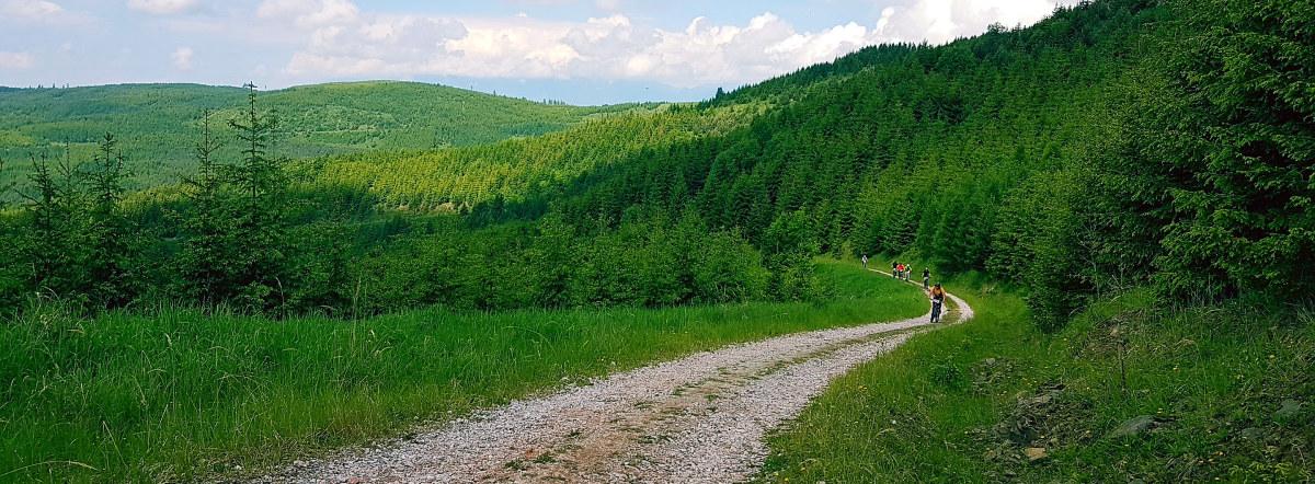 Reportáž: STEFE MTB maratón Levočské vrchy – víkend plný zážitkov na východe