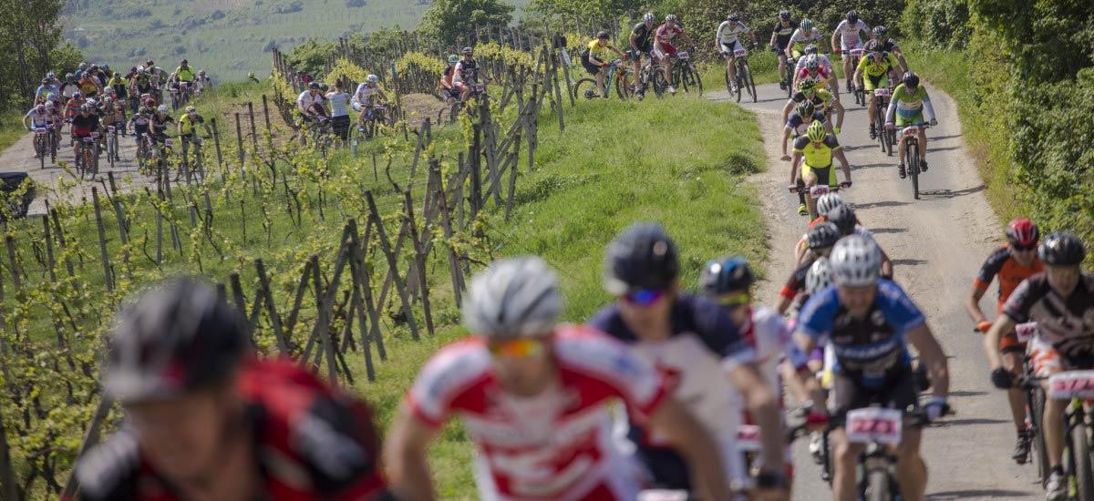 Pozvánka: ŠKODA Svätojurský MTB maratón - odštartujte sezónu vo vinohradníckom mestečku