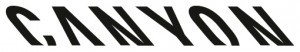 Logo: Testovacie dni Canyon