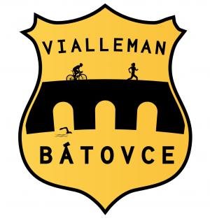 Logo: Vialleman